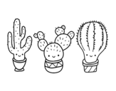 Disegno di 3 mini cactus da colorare