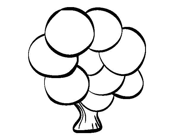 Disegno Di Rosa Con Foglie Da Colorare Acolore Com: Disegno Di Albero Con Foglie Rotonde Da Colorare