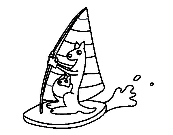Windsurf Disegno: Disegno Di Canguri Su Una Una Tavola Da Windsurf Da