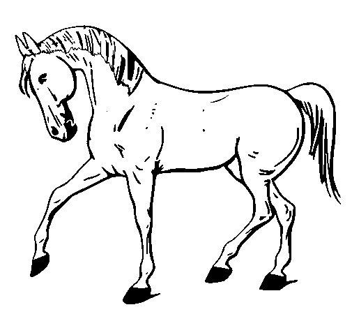 Molto Disegno di Cavallo con la zampa alzata da Colorare - Acolore.com ZG06