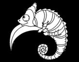 Disegno di Chamaeleonidae da colorare