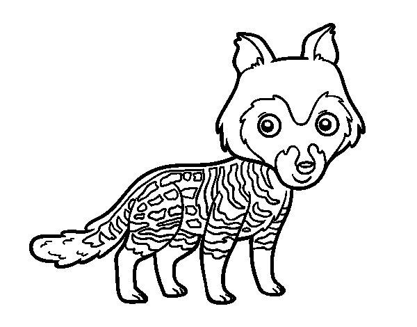Disegno di Civetta africana da Colorare