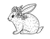 Disegno di Coniglio primavera da colorare