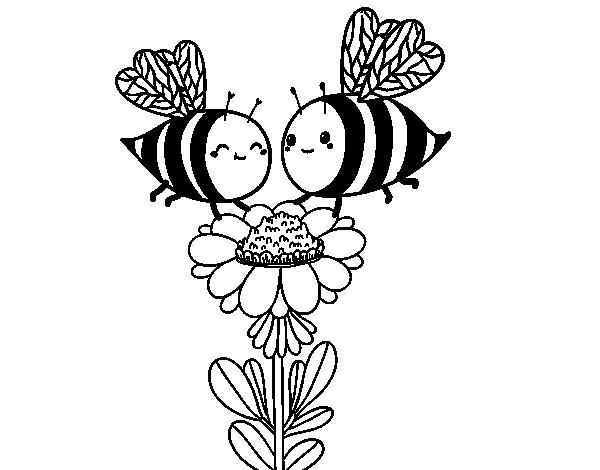 Disegno di Coppia di api da Colorare