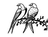 Disegno di Coppia di uccelli da colorare