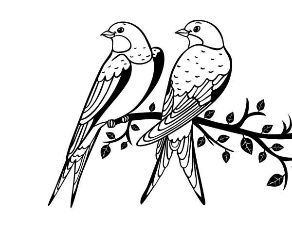 Disegno di coppia di uccelli da colorare - Semplici disegni di uccelli ...