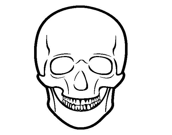 Fabuleux Disegno di Cranio umano da Colorare - Acolore.com MX36