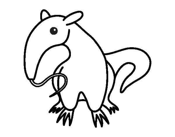 Disegno di Cucciolo di formichiere da Colorare