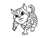 Disegno di Felis silvestris da colorare