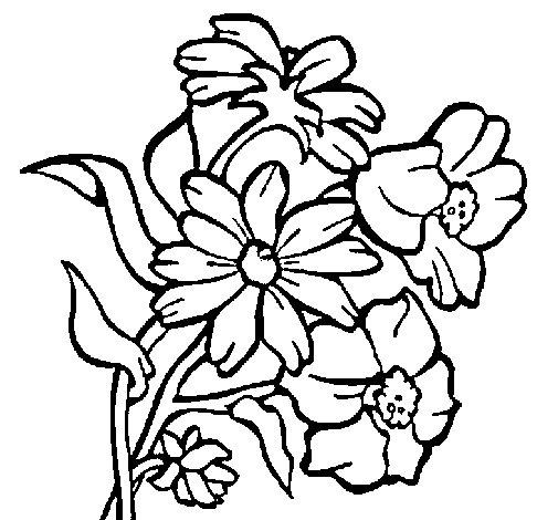 Disegno di fiori da colorare for Disegni fiori da colorare