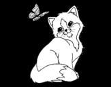 Disegno di Gattino e Farfalla da colorare