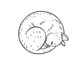 Dibujo de Gattino riposa