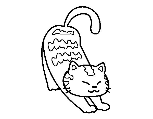 Disegno di gatto accidioso da colorare for Disegno gatto facile