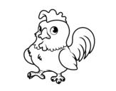 Disegno di Giovane gallo da colorare