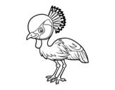 Disegno di Gru coronata grigia da colorare