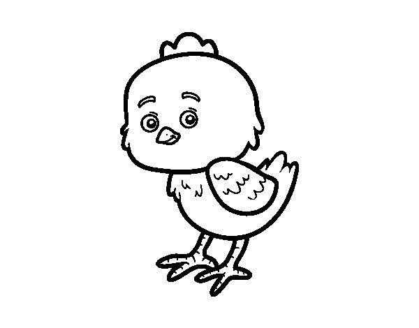 Disegno di Il piccolo pulcino da Colorare