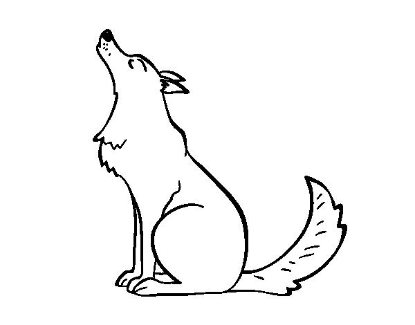 Disegno di lupo ulula da colorare for Disegni di lupi facili