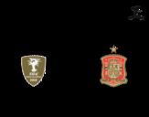 Disegno di Maglia dei mondiali di calcio 2014 della Spagna da colorare