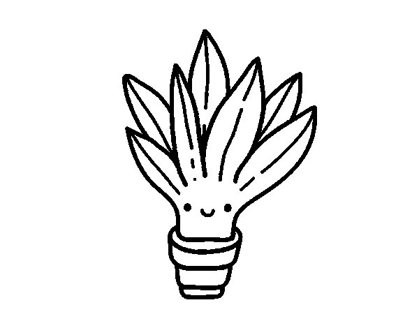 Disegno Di Rosa Con Foglie Da Colorare Acolore Com: Disegno Di Mini Aloe Vera Da Colorare