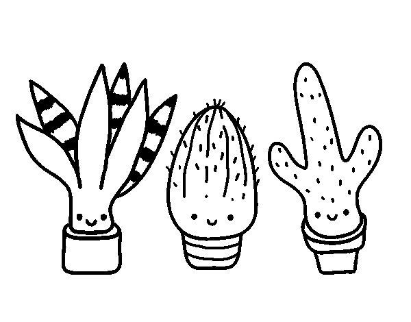 Disegno di Mini cactus da Colorare