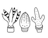 Dibujo de Mini cactus