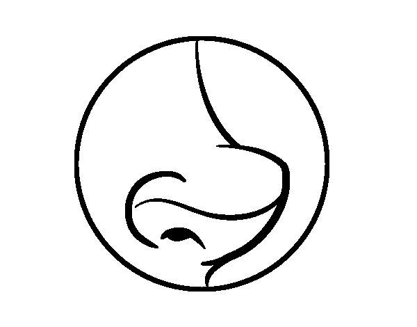 Popolare Disegno di Naso da Colorare - Acolore.com TF94