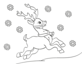 Dibujo de Natale Renna