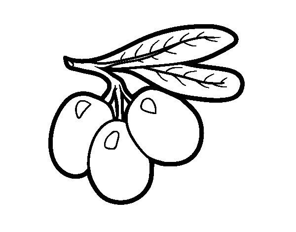 Disegno di Olive filiali da Colorare