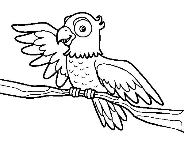Disegno di pappagallo in libert da colorare for Disfare la valigia in inglese