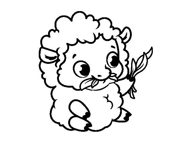 Disegno di Pecora bambino da Colorare