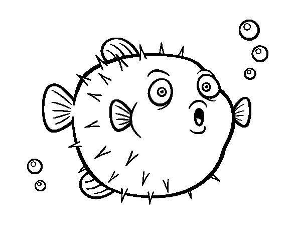 Disegno di pesci palla da colorare for Disegno pesce palla