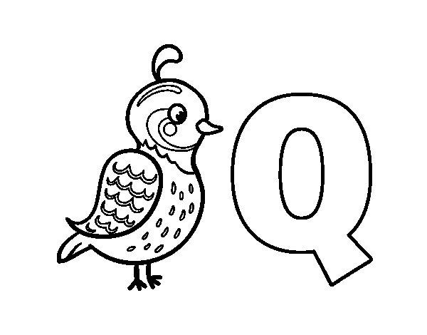 Disegno di Q di Quetzal da Colorare