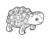 Dibujo de Tartaruga stellata indiana