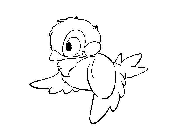 Disegno Di Uccellini Del Bosco Da Colorare