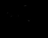 Disegno di Un cucciolo di ghepardo in corsa da colorare