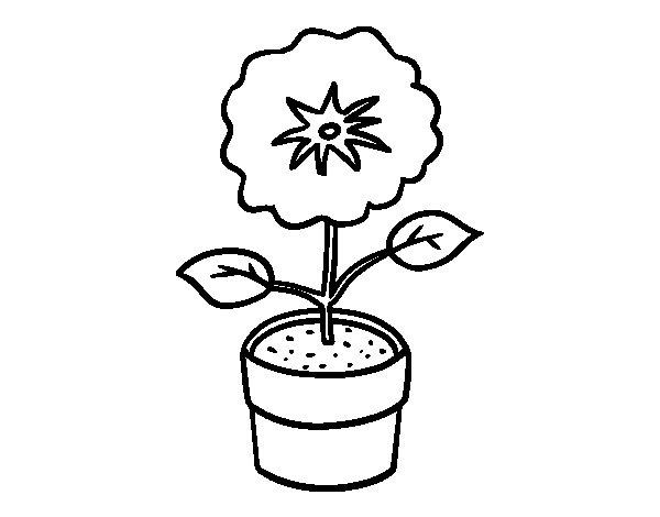 Disegno di Un fiore di primavera da Colorare