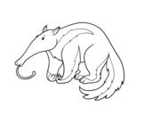 Disegno di Un oritteropo da colorare