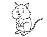 Dibujo de Un piccolo criceto