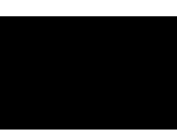 Disegno Di Un Tucano Da Colorare