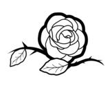 Disegno di Una bella rosa da colorare