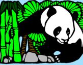 Disegno Orso panda con bambù  pitturato su gabriel