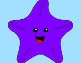 Disegno Stella di mare pitturato su stella-marina