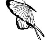 Disegno Farfalla con grandi ali pitturato su F