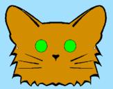 Disegno Gatto  pitturato su Davide B.