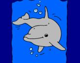 Disegno Delfino pitturato su francescoooo