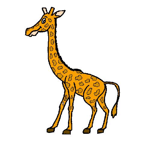 Disegno giraffa colorato da utente non registrato il 12 di for Immagini giraffa per bambini
