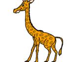 Disegno Giraffa  pitturato su giraffa