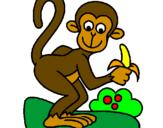 Disegno Scimmietta  pitturato su scimmia