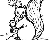 Disegno Scoiattolo pitturato su Codarossa1