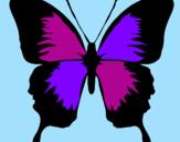 Disegno Farfalla con le ali nere pitturato su farfalla